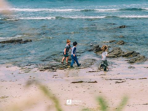 大洋路旅游景点图片