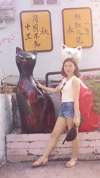 猫咪博物馆旅游景点攻略图