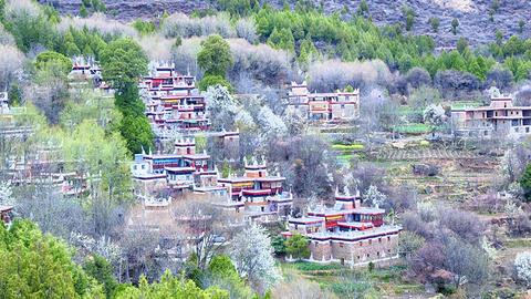 甲居藏寨的图片
