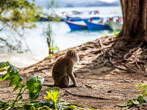 湿米岛旅游景点图片