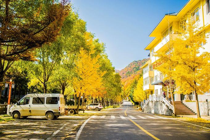 白云山酒店度假区图片