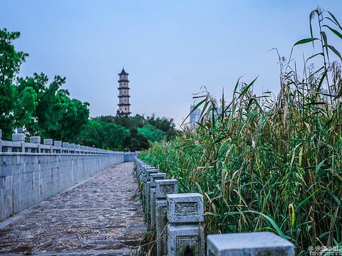 江心屿旅游景点图片