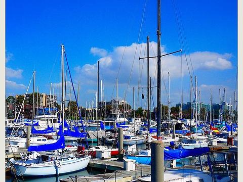 威尼斯海滩旅游景点图片