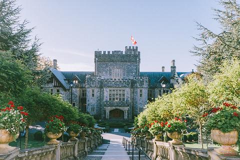 哈利城堡旅游景点攻略图