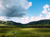 塔那那利佛旅游景点攻略图片