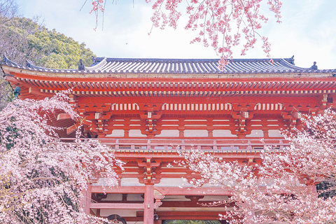 醍醐寺的图片