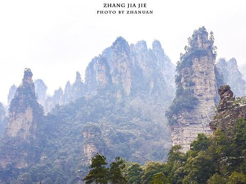 索溪峪旅游景点图片