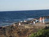 大洋路旅游景点攻略图片