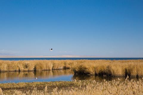 可鲁克湖景区旅游景点攻略图