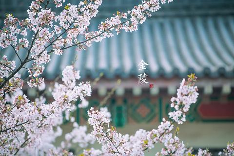 南京旅游图片