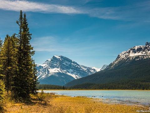 水禽湖旅游景点图片