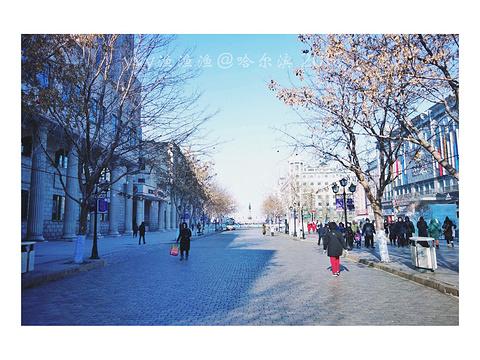 哈尔滨市人民防洪胜利纪念塔旅游景点攻略图