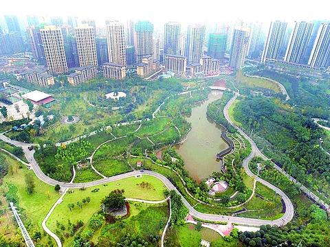 龙头寺公园旅游景点图片