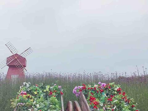 仙凤三宝农业休闲观光园旅游景点图片