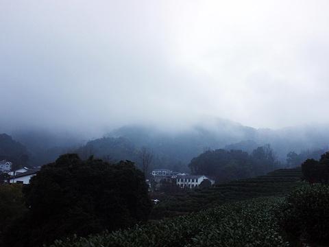 龙井村旅游景点图片