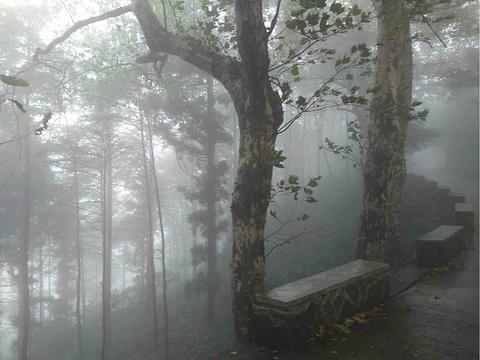 莫干山景区旅游景点攻略图