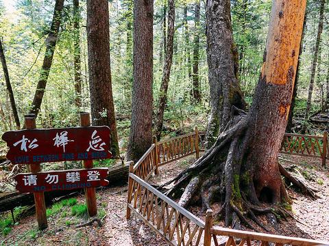 锦江瀑布旅游景点图片