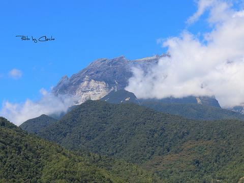 沙巴神山罗氏峰旅游景点图片