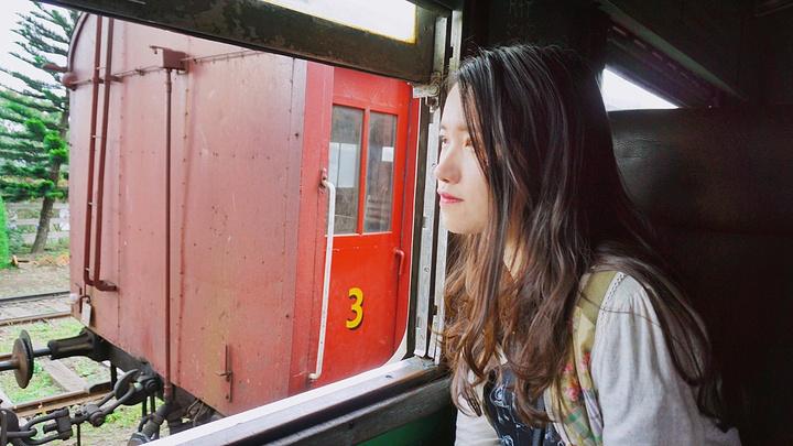 """""""因为我不敢把身体全部挂在火车外面,所以拍了一堆放佛在挂火车的自拍。还有一大堆在窗边拍的_茶园火车""""的评论图片"""