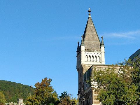 麦吉尔大学旅游景点图片