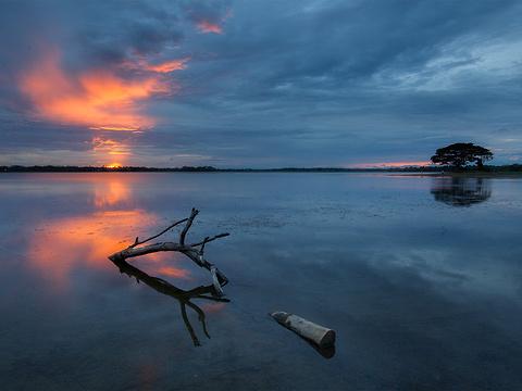 蒂瑟默哈拉默湖旅游景点图片