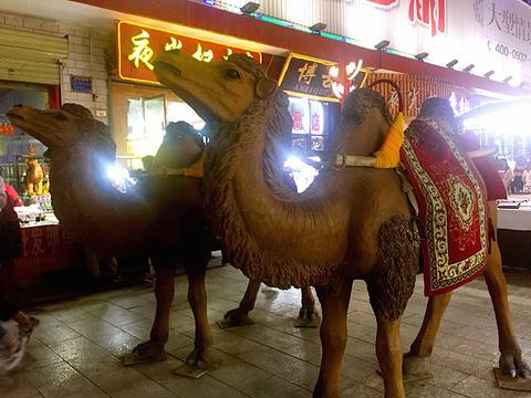 沙洲市场旅游景点攻略图