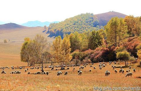 乌兰布统草原旅游景点攻略图