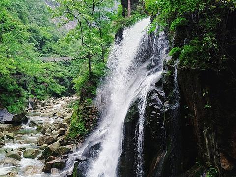 大鄣山卧龙谷旅游景点图片