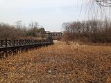 淹城遗址公园