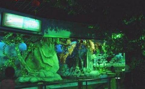 石狮海洋世界旅游景点攻略图