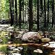 和平森林公园