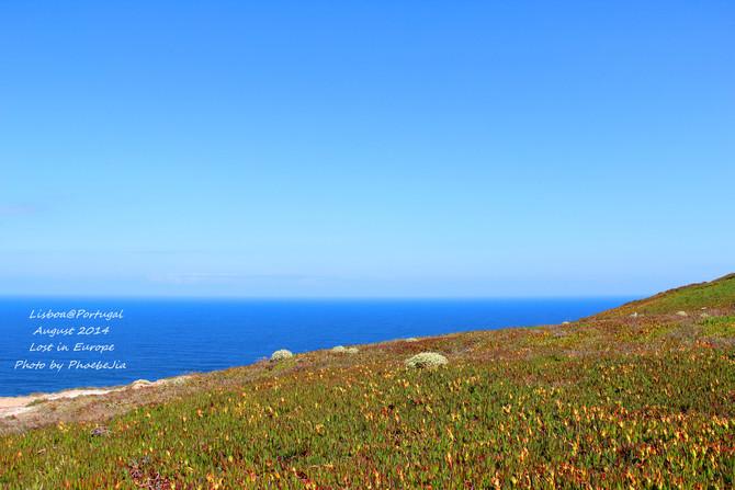 罗卡岬图片