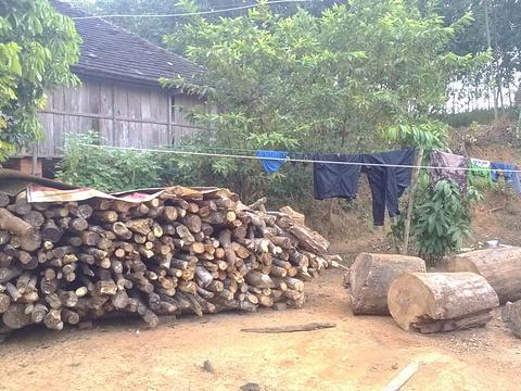 曼贺蚌傣家村寨旅游景点图片