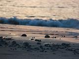北海旅游景点攻略图片