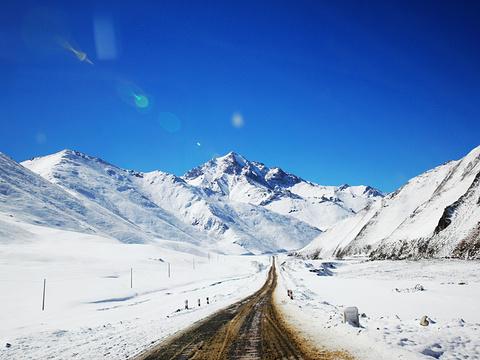 七一冰川旅游景点图片