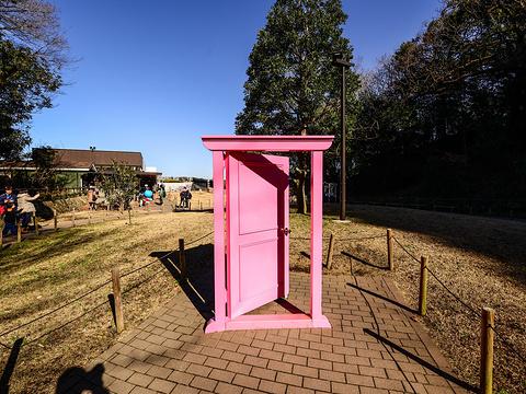 藤子·F·不二雄博物馆旅游景点图片