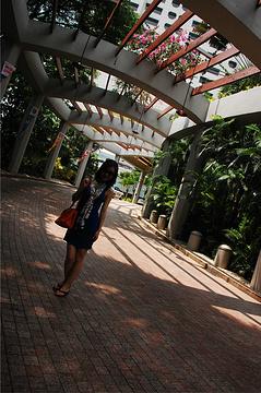 滨海湾金沙旅游景点攻略图