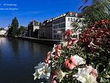 斯特拉斯堡旅游景点攻略图片