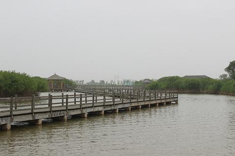 黄河口生态旅游区旅游景点攻略图