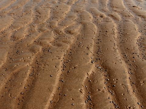 白沙湾海水浴场旅游景点图片