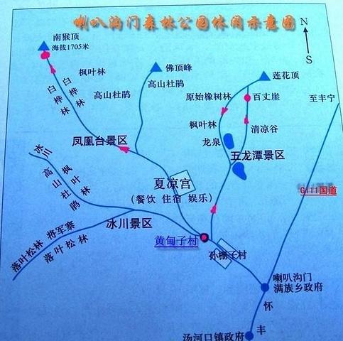"""""""震撼到了,这是目前我见过最壮观的""""花路"""",从入口到喇叭沟门景区,将近10公里的鲜花铺路。还是上图吧_北京喇叭沟原始森林公园""""的评论图片"""