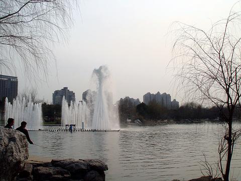 世纪公园旅游景点攻略图
