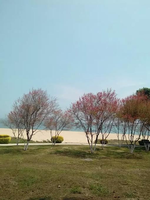 白城沙滩图片