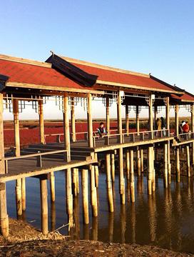 盘锦红海滩风景区旅游景点攻略图
