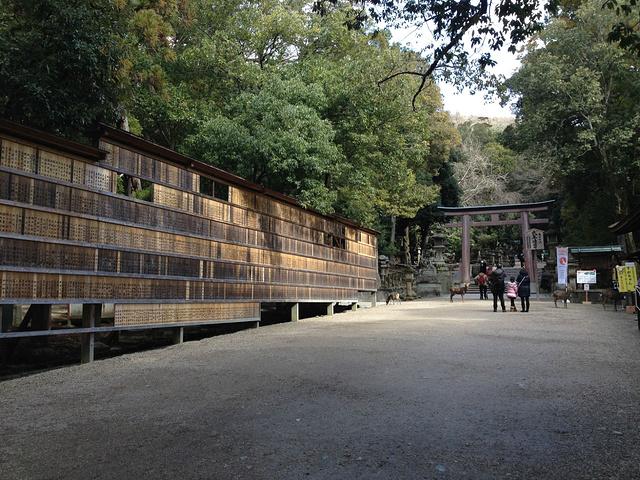 """""""奈良的最大的日本神社景点就是春日大社_春日大社""""的评论图片"""