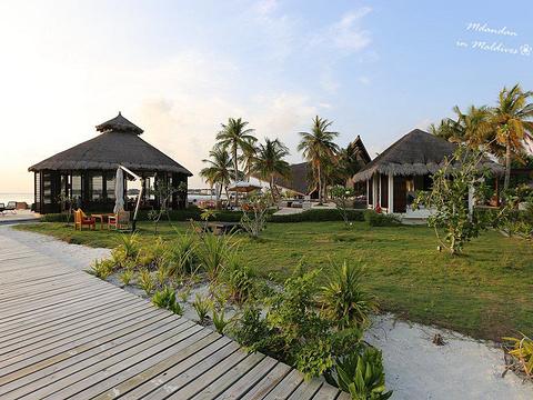 卓美亚维塔维丽岛旅游景点图片