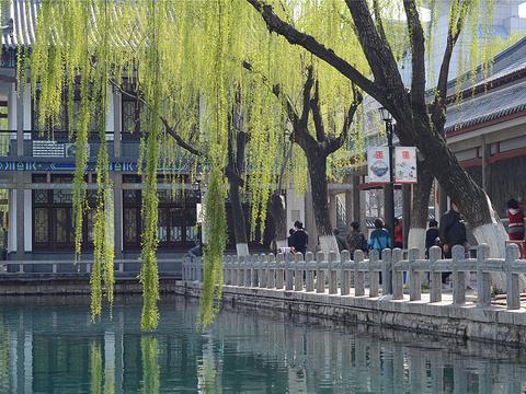 五龙潭公园旅游景点图片