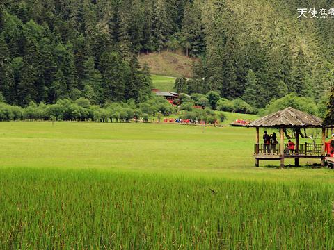 普达措国家公园旅游景点图片