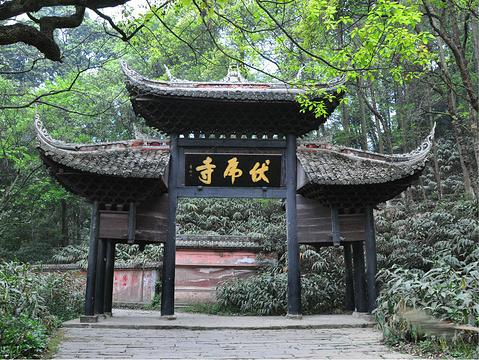 伏虎寺的图片