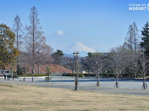 骏府城公园旅游景点图片